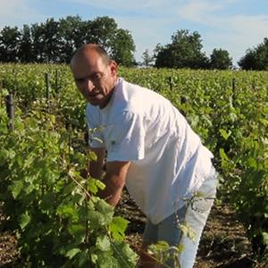 Taille des vignes au domaine Olivier Carême